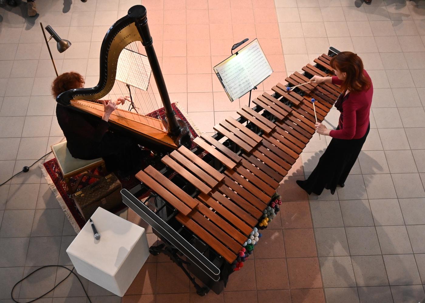 Harfe und Marimba · Faszinierende Instrumente